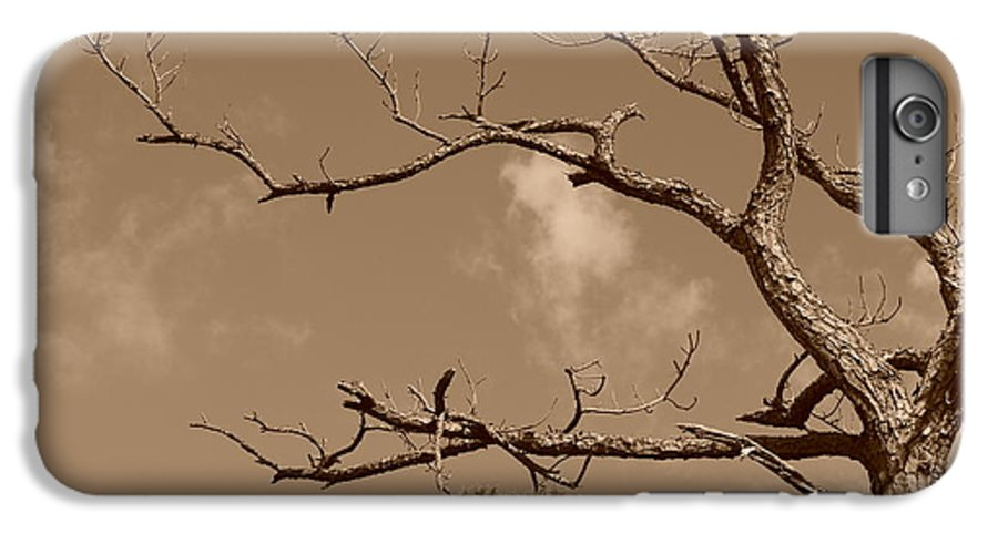 Sepia IPhone 6 Plus Case featuring the photograph Dead Wood by Rob Hans