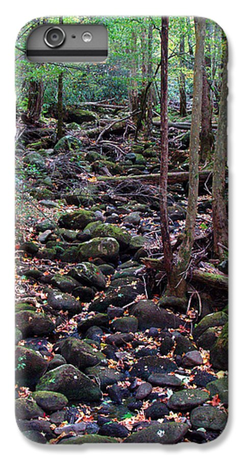 River IPhone 6 Plus Case featuring the photograph Dry River Bed- Autumn by Nancy Mueller