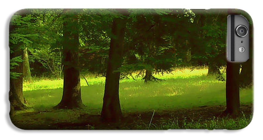 Nature IPhone 6 Plus Case featuring the photograph Enchanted Forest by Linda Sannuti