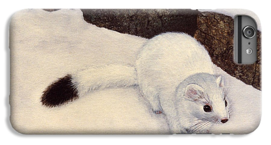 Wildlife IPhone 6 Plus Case featuring the painting Ermine In Winter by Frank Wilson