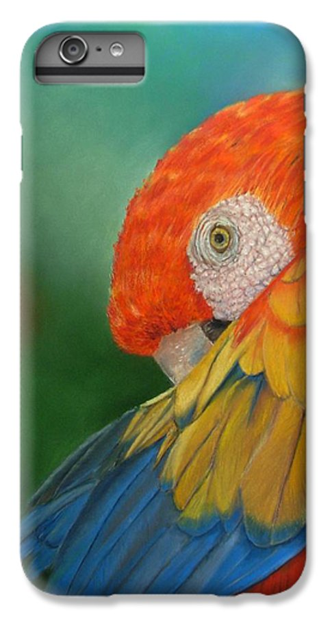 Bird IPhone 6 Plus Case featuring the painting Escondida by Ceci Watson