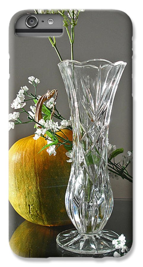 Still Life IPhone 6 Plus Case featuring the photograph Everlasting Harvest by Shelley Jones