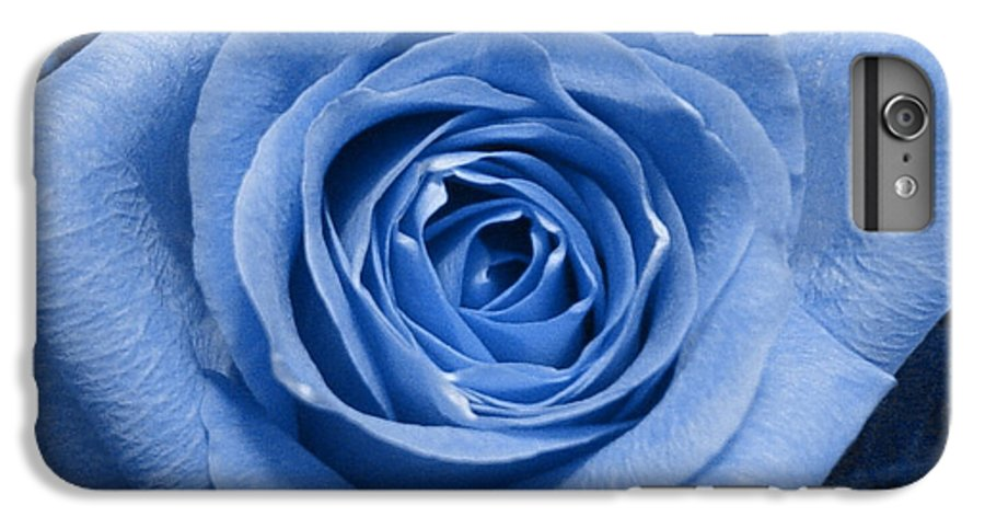 Rose IPhone 6 Plus Case featuring the photograph Eye Wide Open by Shelley Jones