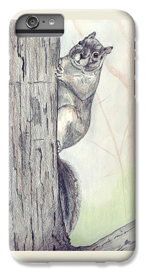 Color Pencil IPhone 6 Plus Case featuring the drawing Feeder Raider by Debra Sandstrom