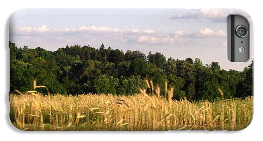 Field IPhone 6 Plus Case featuring the photograph Fields Of Grain by Rhonda Barrett