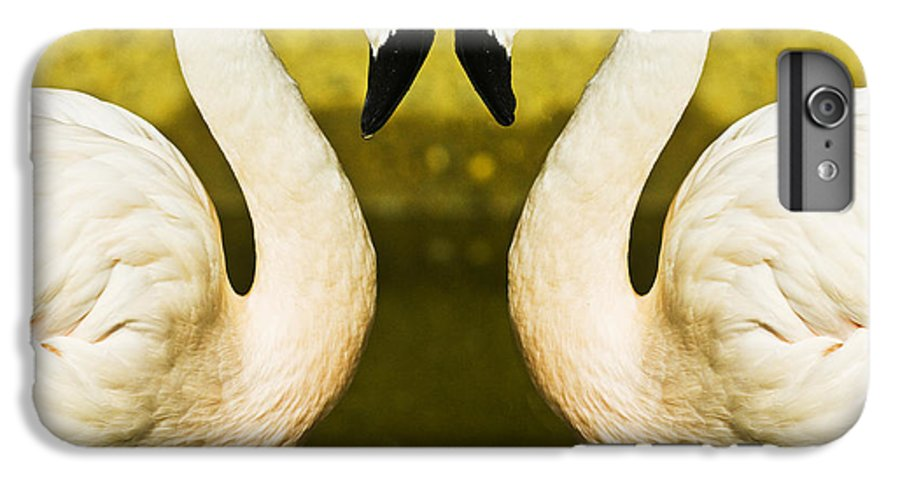 Flamingo IPhone 6 Plus Case featuring the photograph Flamingo Reflection by Sheila Smart Fine Art Photography