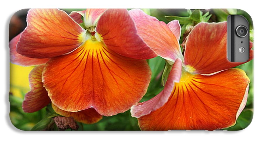 Flowers IPhone 6 Plus Case featuring the photograph Flower Lips by Linda Sannuti