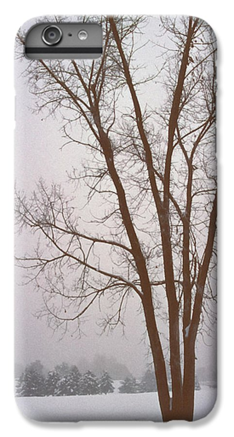 Nature IPhone 6 Plus Case featuring the photograph Foggy Morning Landscape 13 by Steve Ohlsen