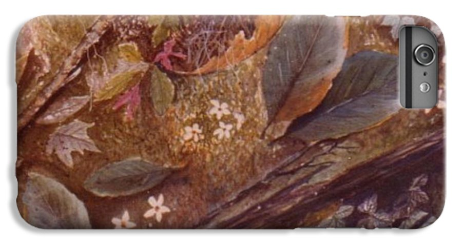 Leaves; Forest; Flowers IPhone 6 Plus Case featuring the painting Forest Floor by Ben Kiger