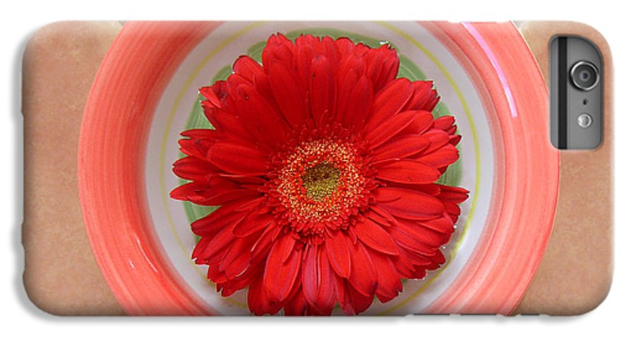 Nature IPhone 6 Plus Case featuring the photograph Gerbera Daisy - Bowled On Tile by Lucyna A M Green