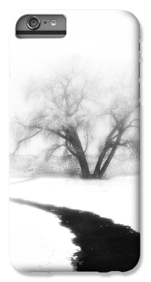 Tree IPhone 6 Plus Case featuring the photograph Getting There by Marilyn Hunt