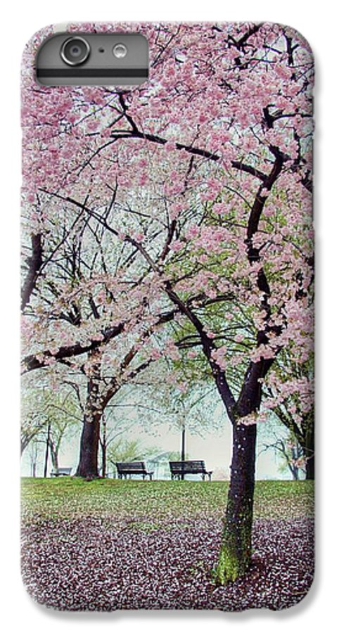Cherry Blossoms IPhone 6 Plus Case featuring the photograph Gifts by Mitch Cat