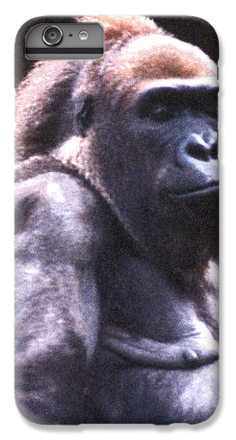 Gorilla IPhone 6 Plus Case featuring the photograph Gorilla by Steve Karol