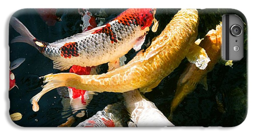 Fish IPhone 6 Plus Case featuring the photograph Group Of Koi Fish by Dean Triolo
