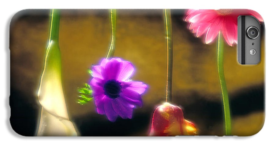 Tulip IPhone 6 Plus Case featuring the photograph Hanging Flowers by Tony Cordoza