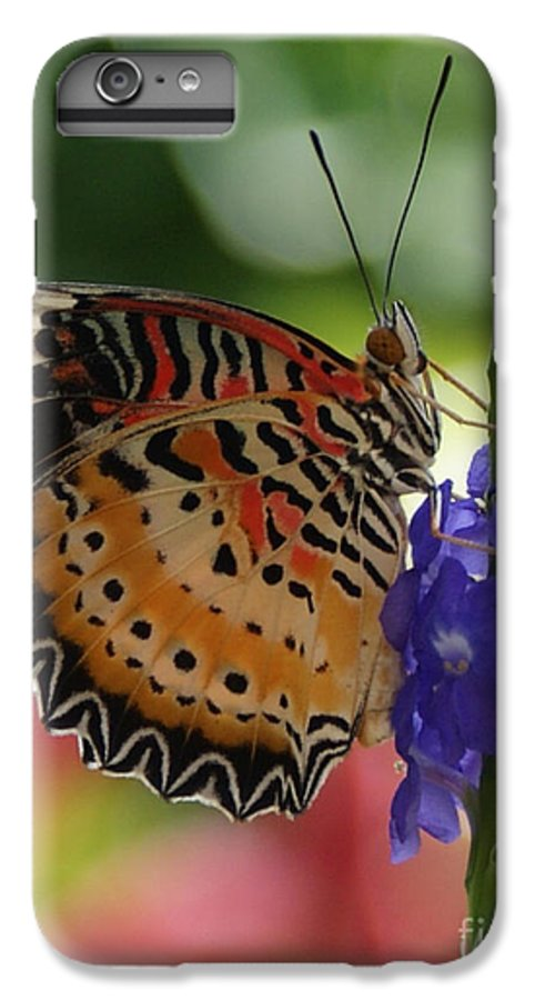Butterfly IPhone 6 Plus Case featuring the photograph Hanging On by Shelley Jones