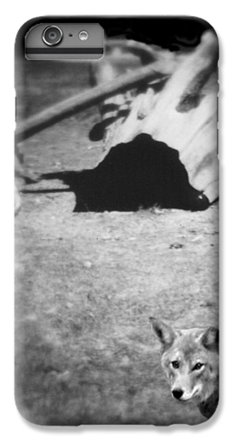 Yosemite IPhone 6 Plus Case featuring the photograph Homage To Josef Beuys by Ann Tracy