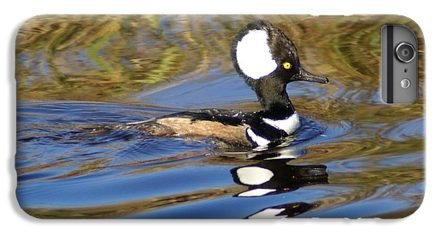 Duck IPhone 6 Plus Case featuring the photograph Hooded Mersanger by Debbie May