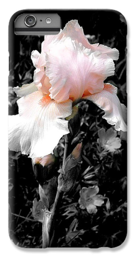 Flower IPhone 6 Plus Case featuring the photograph Iris Emergance by Steve Karol