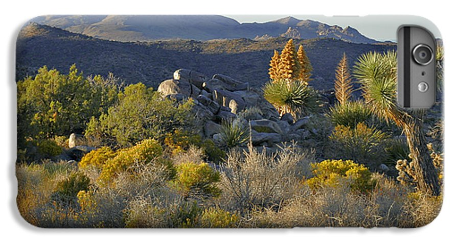 Sunset IPhone 6 Plus Case featuring the photograph Joshua Tree National Park In California by Christine Till