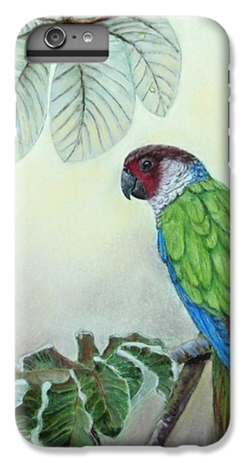 Wildlife IPhone 6 Plus Case featuring the painting Kasanga Bajo El Guarumo by Ceci Watson