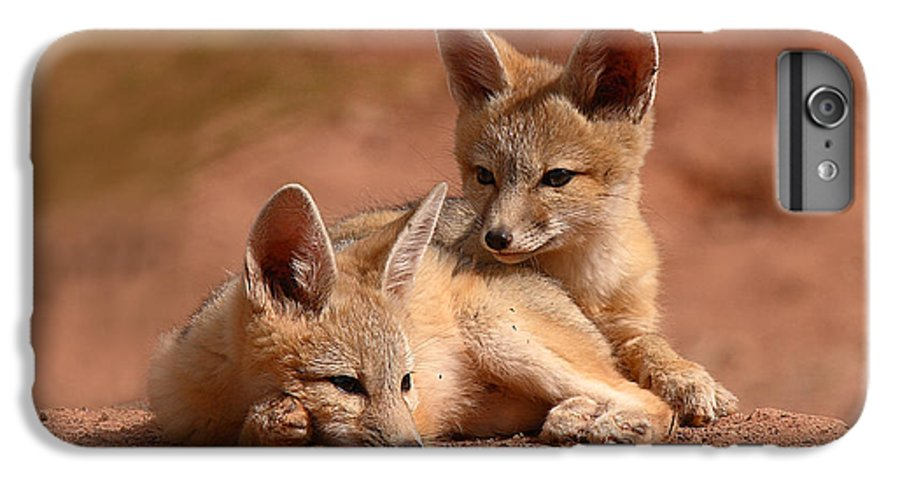 Fox IPhone 6 Plus Case featuring the photograph Kit Fox Pups On A Lazy Day by Max Allen