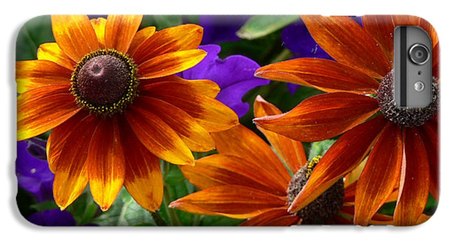Flowers IPhone 6 Plus Case featuring the photograph Layers Of Color by Larry Keahey