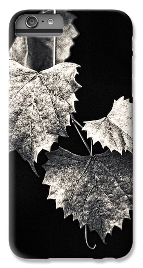 B&w IPhone 6 Plus Case featuring the photograph Leaves by Christopher Holmes
