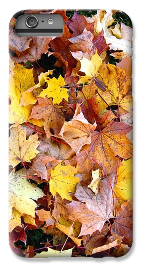 Leaves IPhone 6 Plus Case featuring the photograph Leaves Of Fall by Rhonda Barrett