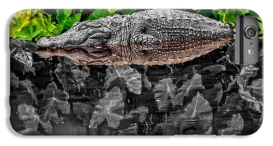 American IPhone 6 Plus Case featuring the photograph Let Sleeping Gators Lie - Mod by Christopher Holmes