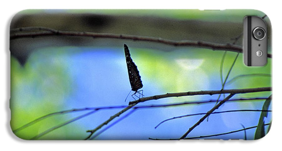 Butterfly IPhone 6 Plus Case featuring the photograph Life On The Edge by Randy Oberg