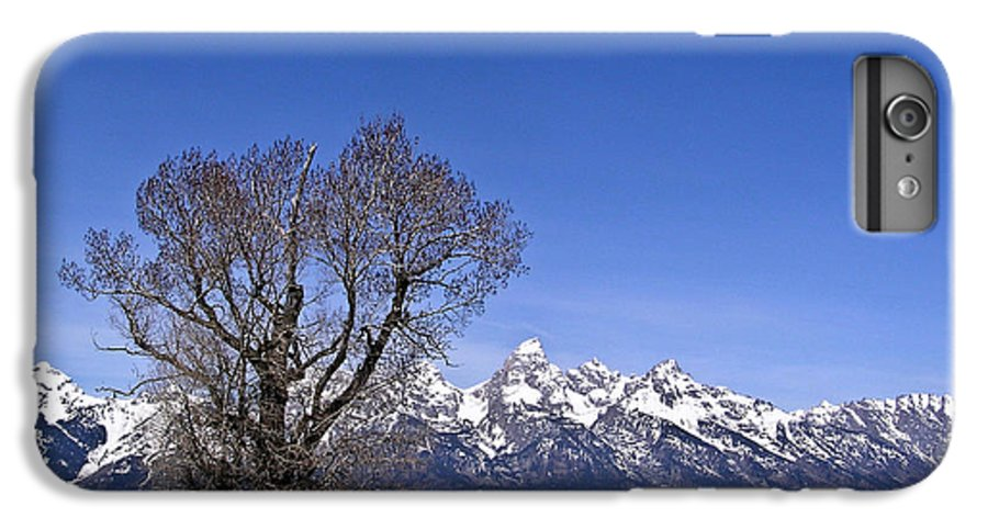 Tree IPhone 6 Plus Case featuring the photograph Lone Tree At Tetons by Douglas Barnett