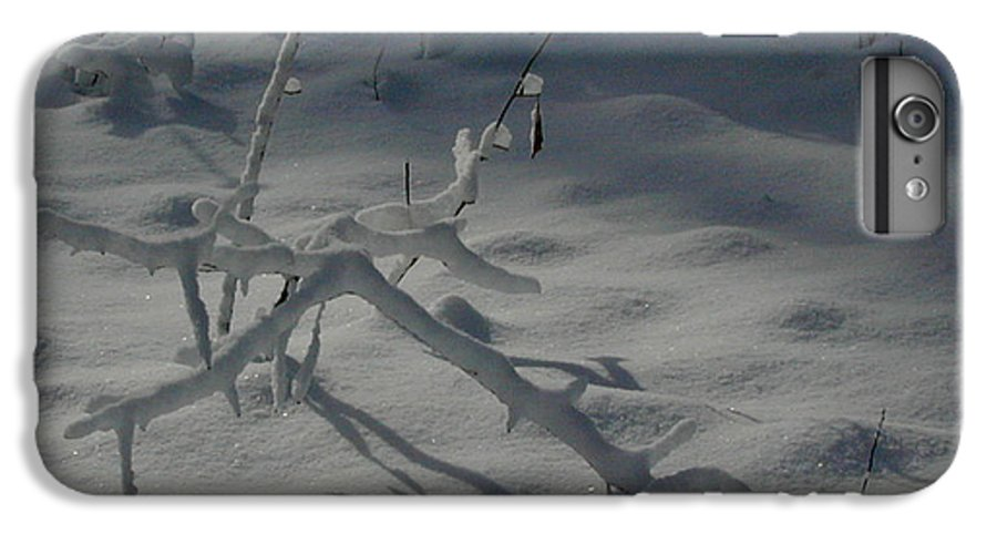 Loneliness IPhone 6 Plus Case featuring the photograph Loneliness In The Cold by Douglas Barnett