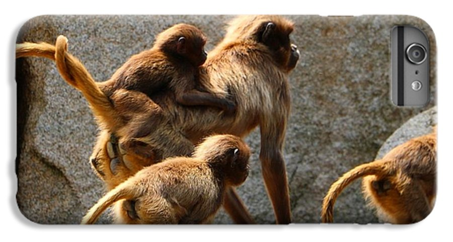 Animal IPhone 6 Plus Case featuring the photograph Monkey Family by Dennis Maier