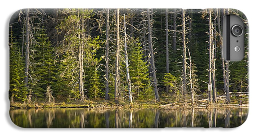Trees IPhone 6 Plus Case featuring the photograph Moose Creek Reservoir by Idaho Scenic Images Linda Lantzy