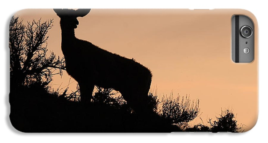 Deer IPhone 6 Plus Case featuring the photograph Mule Deer Silhouetted Against Sunset Ridge by Max Allen