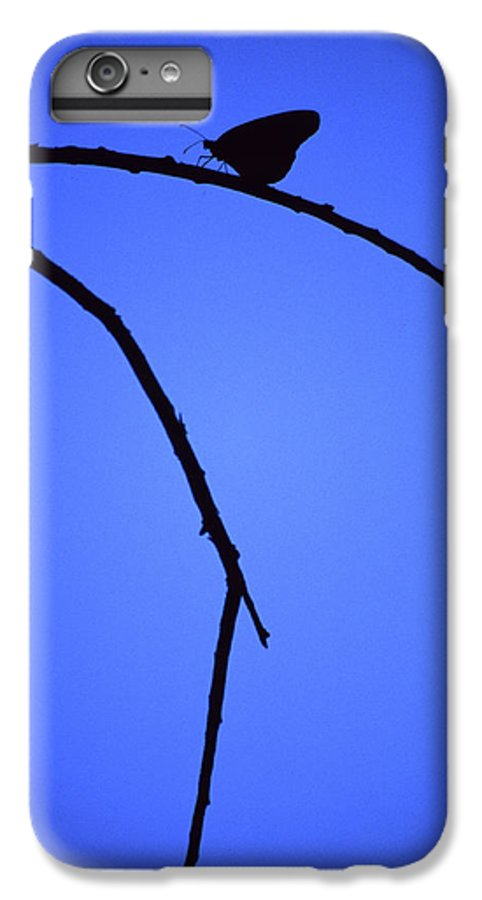 Nature IPhone 6 Plus Case featuring the photograph Natures Elegance by Randy Oberg