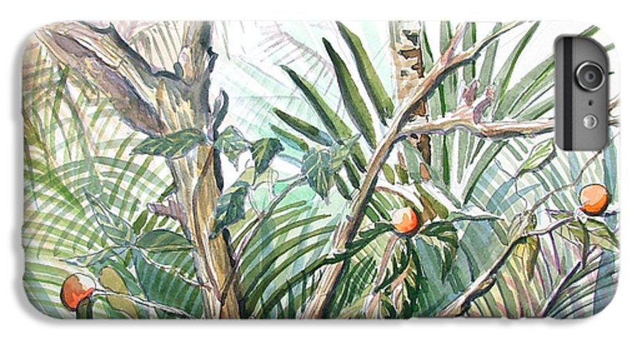 Fruit IPhone 6 Plus Case featuring the painting Orange Tree by Mindy Newman