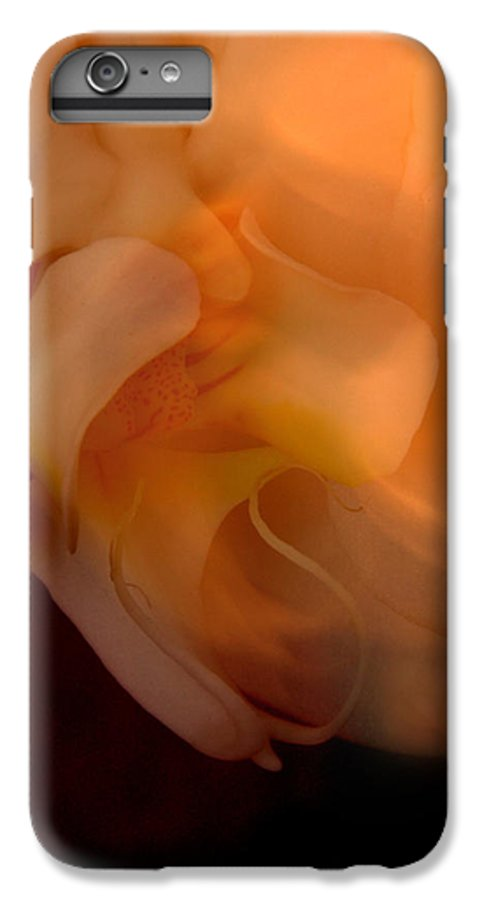 Orchid IPhone 6 Plus Case featuring the photograph Orchid Detail by Michael Ziegler
