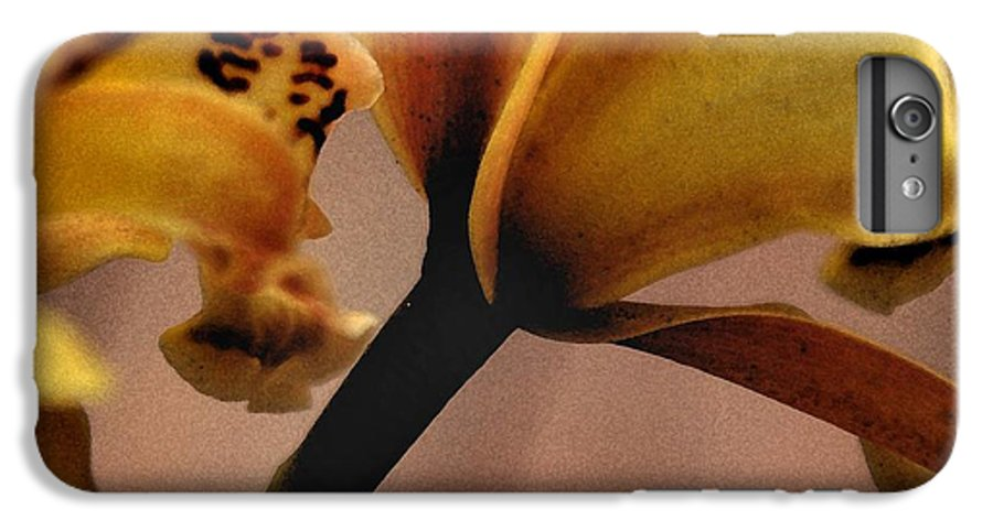 Orchid IPhone 6 Plus Case featuring the photograph Orchid Yellow by Michael Ziegler