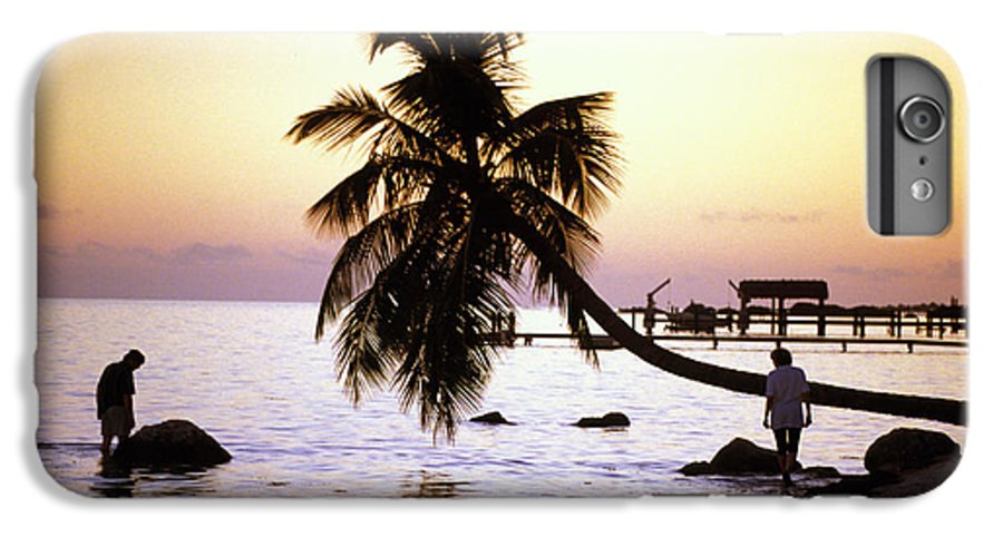 Sunset IPhone 6 Plus Case featuring the photograph Palm At The Moorings by Carl Purcell