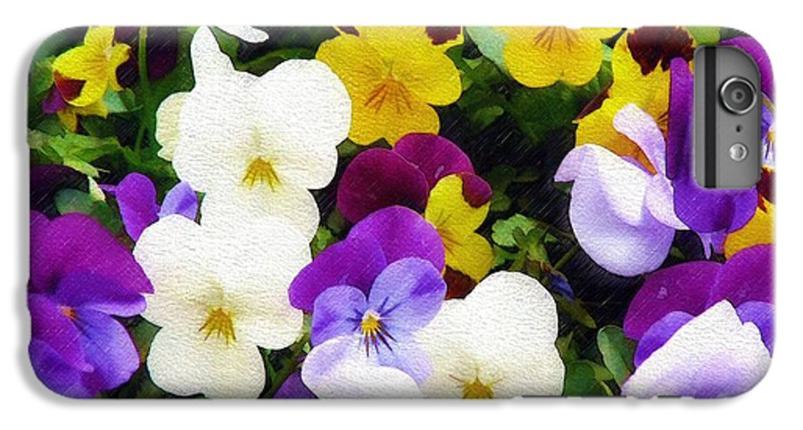 Pansies IPhone 6 Plus Case featuring the photograph Pansies by Sandy MacGowan