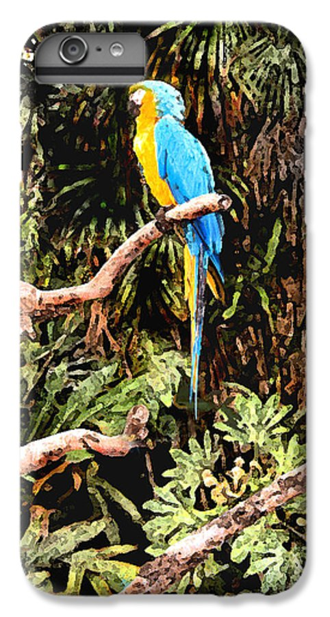 Parrot IPhone 6 Plus Case featuring the photograph Parrot by Steve Karol