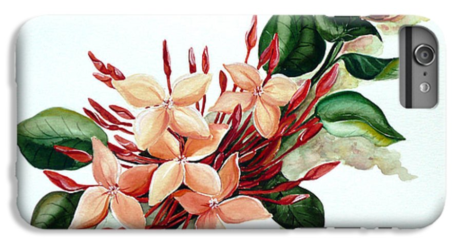 Floral Peach Flower Watercolor Ixora Botanical Bloom IPhone 6 Plus Case featuring the painting Peachy Ixora by Karin Dawn Kelshall- Best