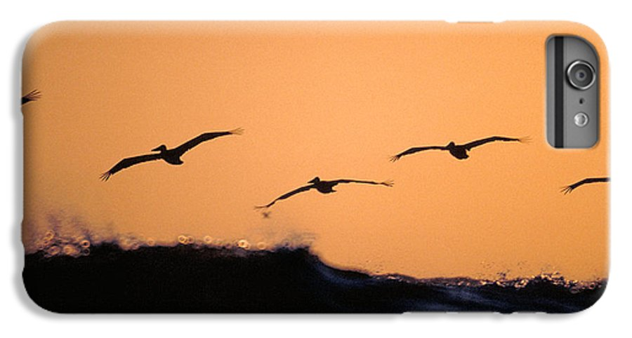Pelicans IPhone 6 Plus Case featuring the photograph Pelicans Over The Pacific by Michael Mogensen