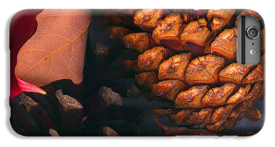 Pine Cones IPhone 6 Plus Case featuring the photograph Pine Cones And Leaves by Nancy Mueller