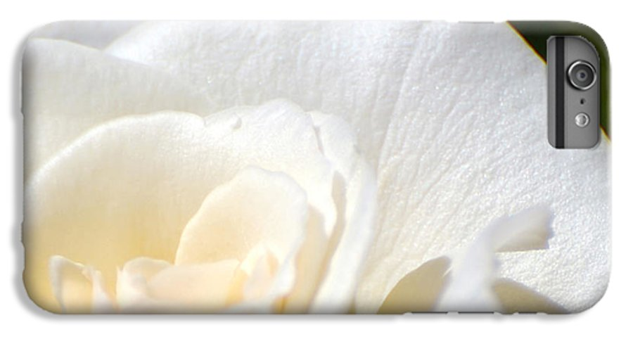 Flower IPhone 6 Plus Case featuring the photograph Pure by Larry Keahey