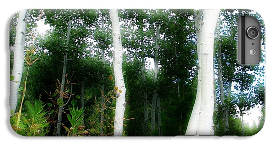 Aspens IPhone 6 Plus Case featuring the photograph Quaking by Idaho Scenic Images Linda Lantzy