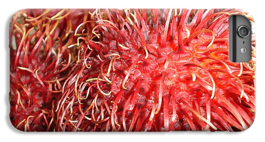 Fruit Close Up IPhone 6 Plus Case featuring the photograph Rambutan by Chandelle Hazen