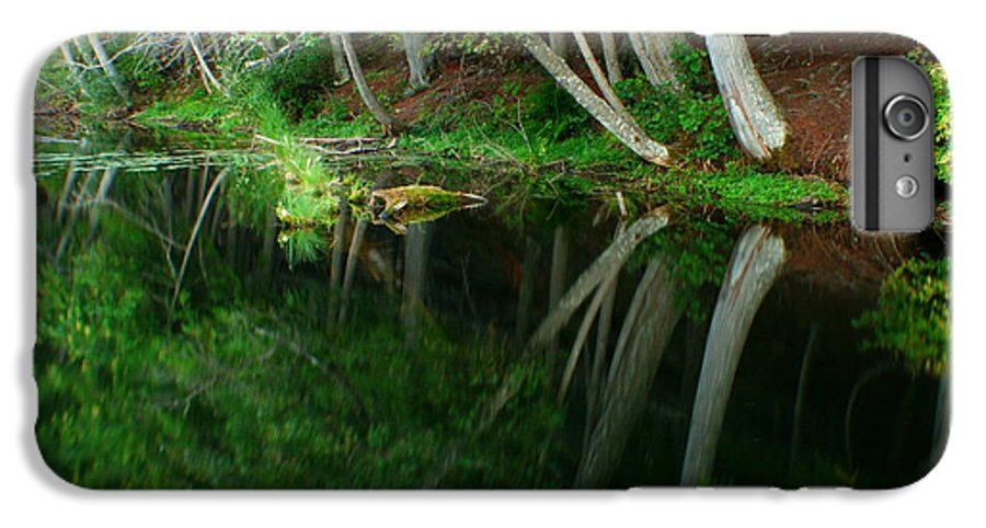 Forest IPhone 6 Plus Case featuring the photograph Reflections Of A Forest by Idaho Scenic Images Linda Lantzy
